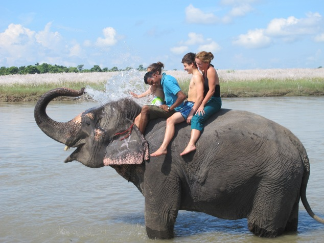 Bathing the elephant, Nepal