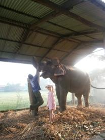 Elephant petting, Chitwan National Park, Nepal