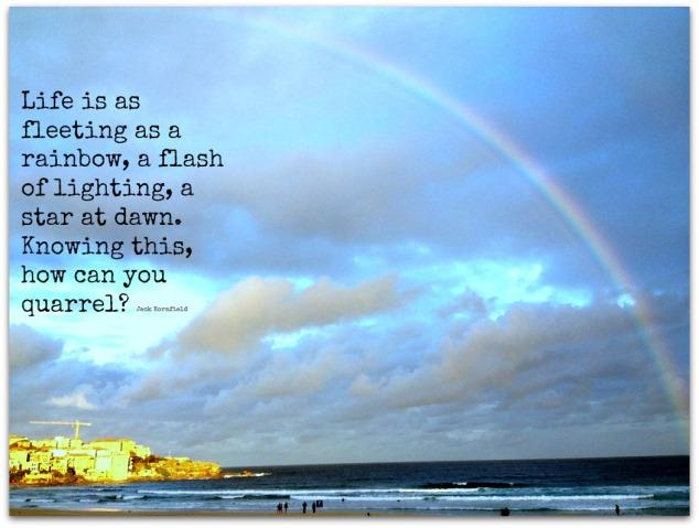 Fleeting Bondi rainbow